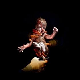 生命的真相,刚出生那几秒婴儿的真照!大图慎点,恐引起不适
