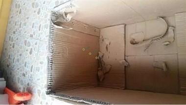 神坑!买回25斤苹果,纸箱竟重7斤,箱子夹缝灌满了水泥……