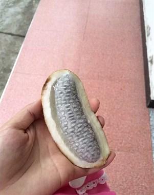 外像面包内似香蕉,这看起来像汉堡包的东西竟然还意外好吃?