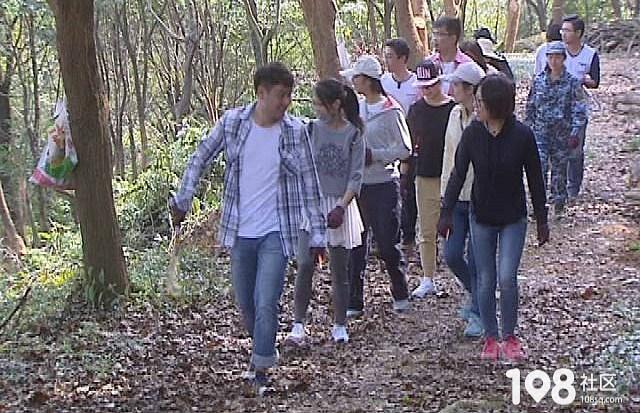 九龙山***森林公园内密布捕鸟网,拆网人不堪重负