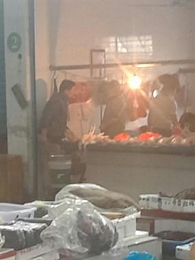 平湖有人好吃狗肉吗,新庙菜场看到的这一幕太残忍了!