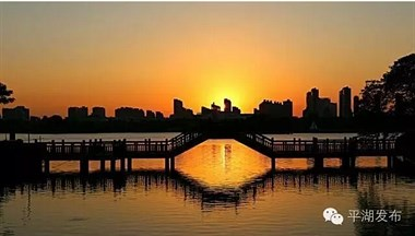 平湖这么美,生活在平湖的你感受到了吗?