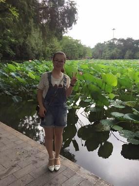 洪湖公园荷花展一游