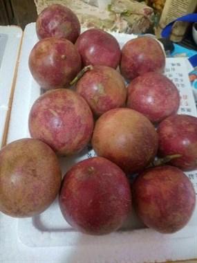 猜下这是什么水果