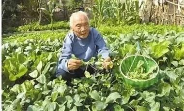 102岁老人40岁器官,竟是因为常吃它!人人都适用