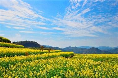 浙东6个少有人识的隐世古村,给你最安闲的春日时光!