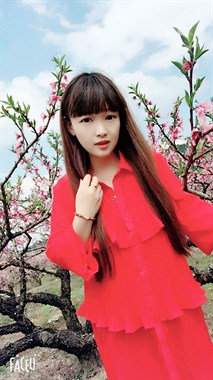 桃花盛开的季节