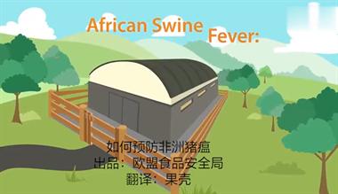 近期非洲猪瘟疫情刷爆朋友圈!官方:德清暂未发现可疑病例