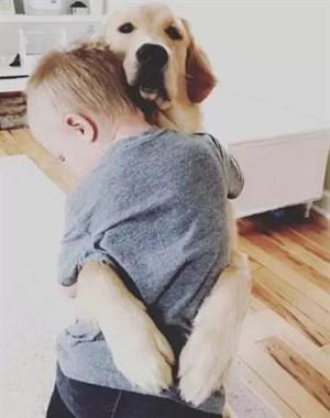 狗狗和孩子相处的画面……这大概就是天使遇上天使吧!