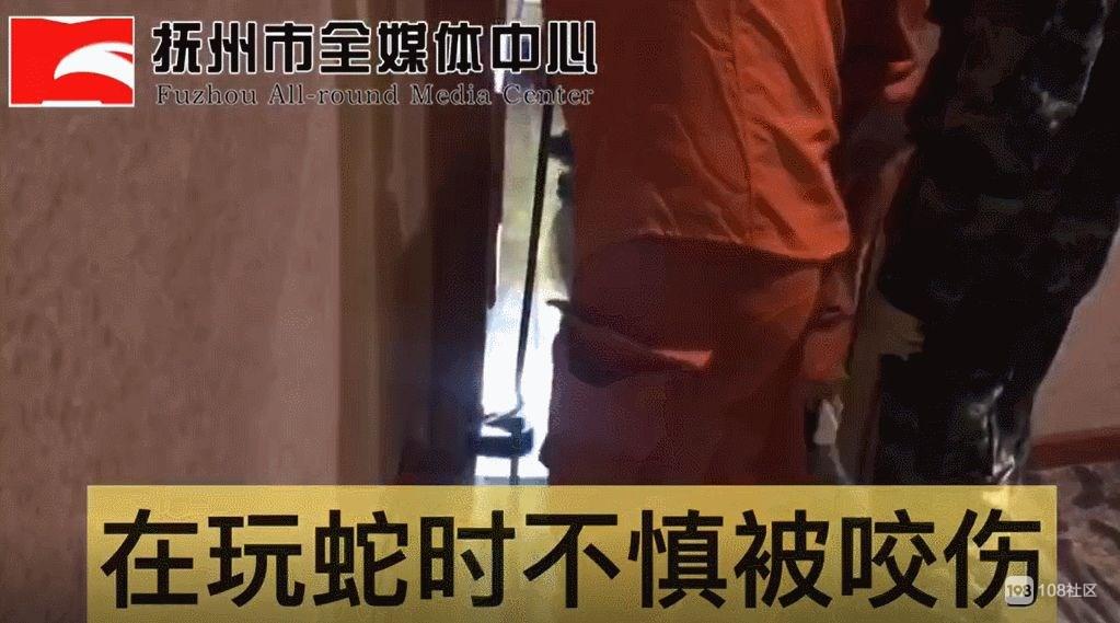 男子在酒店浴缸玩毒蛇,不慎被蛇咬致毒发身亡