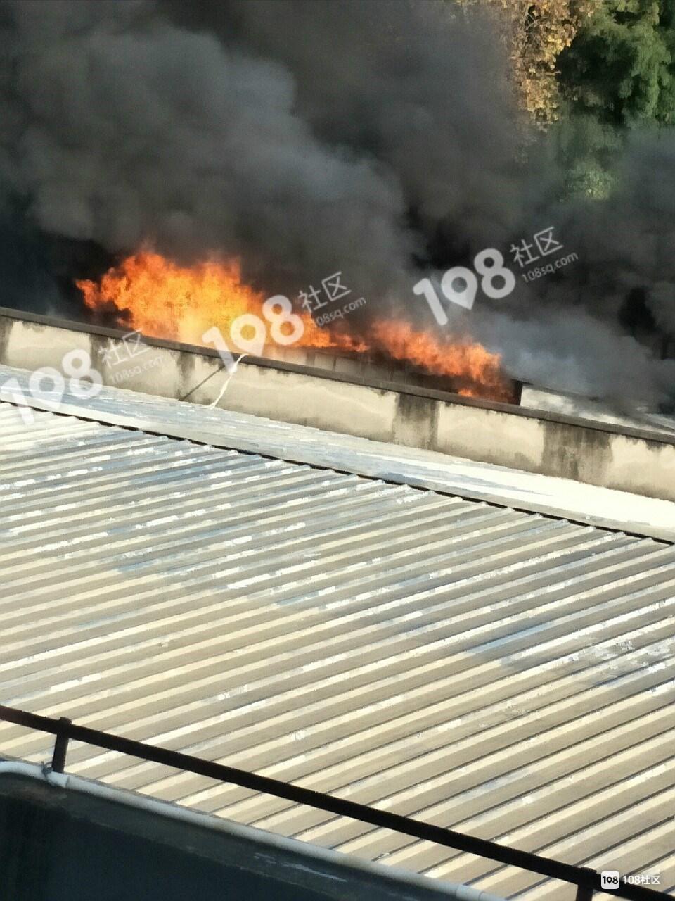 吓死了!蒿坝一厂房突然着起大火,5辆消防车已到现场