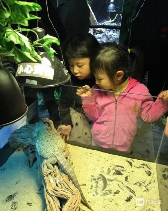 看萌物了,天都城组织萌娃来到幼儿园参观