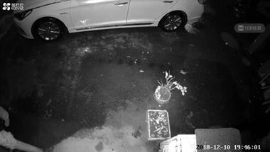 雷甸某小区邻居经过我家车库,遗留一摊这东西!手法惊呆社友