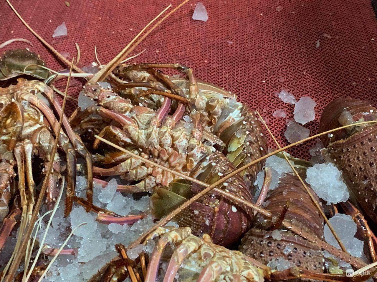 家里办喜事在百官买大龙虾,拿到手才发现竟被掉包了