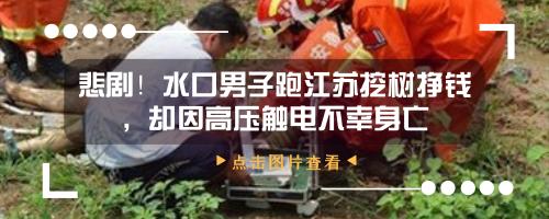 又出大事!水口一50岁男子挖树不幸被砸中胸口,当场身亡!