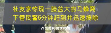 上浦这两个村60岁以上的老人,最近都收到了礼物…