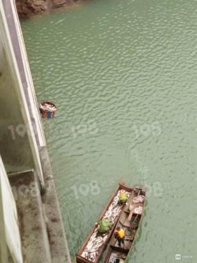 抢鱼了!丰潭水库一年就卖这一次,吊个小水篓一斤只要…