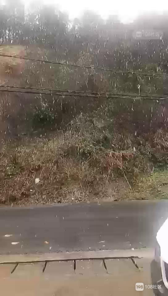 又是一场雪!儒岙小将已纷纷扬扬,天姥山冻出美景来