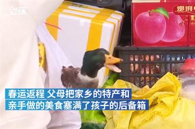 衢州人回城都带着满满的后备箱,这些都是父母的爱!