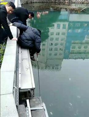 奇葩!南湖桥上有人在捞手机,水里竟有十几只