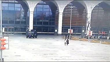 长兴高铁站一女子突然抱着幼童冲向特警,10分钟后…