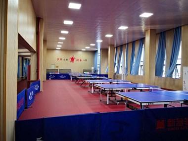 上虞区彬彬体艺乒乓球培训中心开始招生