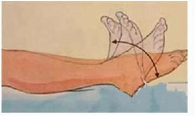每天10秒抬脚,预防血栓(图文教学)