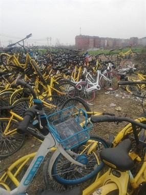 共享单车的坟墓
