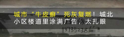 """""""金庭偷桃形李""""?嵊州街头出现神秘涂鸦!社友看到此妇女"""