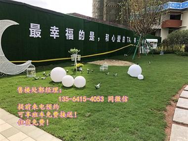 惠州大亚湾碧桂园太东蜜柚 到底好不好啊?有谁买过的吗?