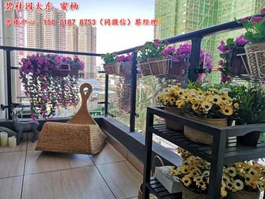 广东惠州碧桂园太东蜜柚地段繁华吗?有没有增长空间?