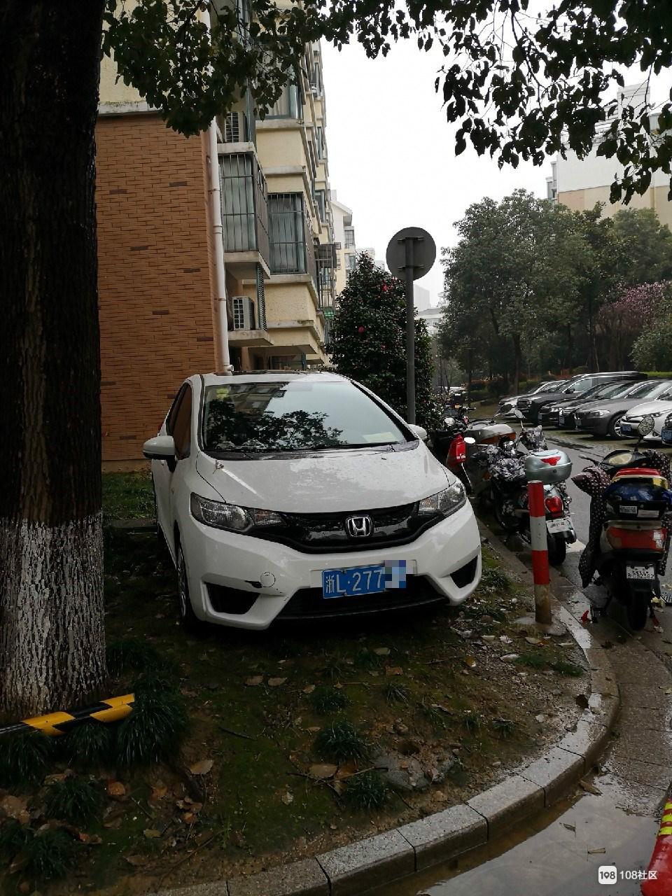 喊话东港某小区车主   绿化带不是给你停车的地方!
