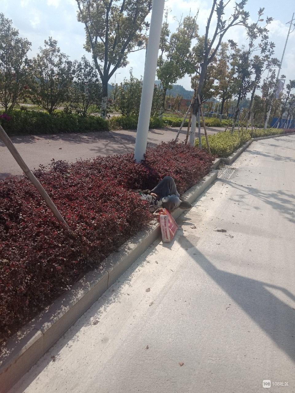 瓷都一老人倒在路边绿化带起不来!社友这举动真暖!
