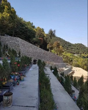 台州有人专偷公墓祭祀的水果、饼干、鲜花…拿回去卖!?