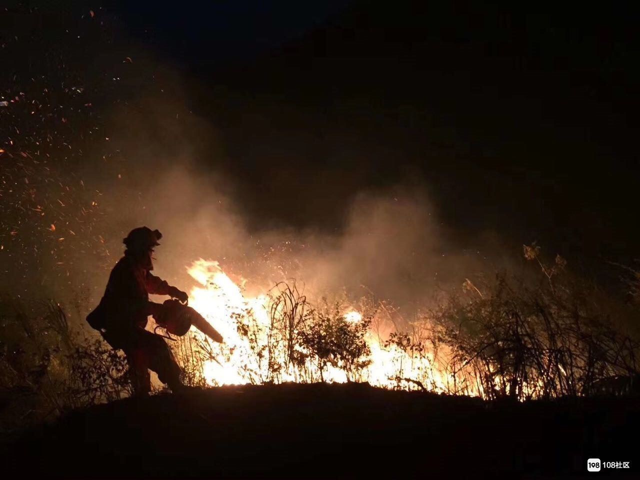 瓷都森林火灾330余人扑救!已于13时35分扑灭