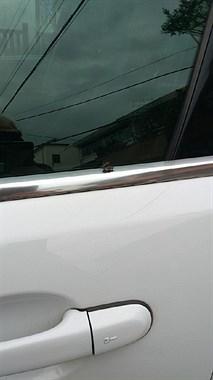 光天化日在车旁就做这么污秽之事,旁边居然还有人录像