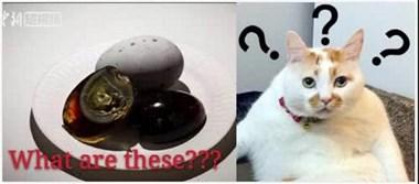 华人海外卖松花蛋被查,意大利警方:不适合人类食用!