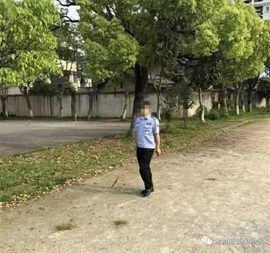 大金毛因思念主人偷跑到他的母校,然而迎接它的却是保安无情的虐杀..