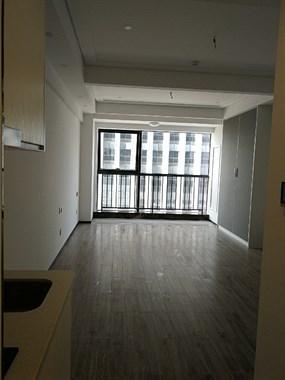 出租新城1号单身公寓一套