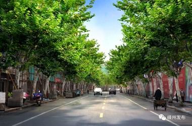 嵊州将打造14条特色景观路!条条大道美不胜收,完成时间…