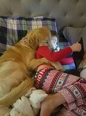 狗狗1岁等于7岁,原来我们都算错了...