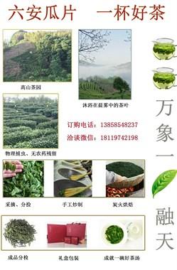 六安瓜片——茶农直销(源产地,核心区)