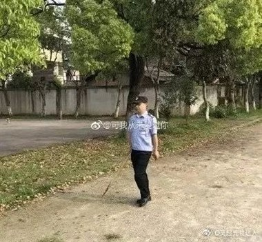 金毛因思念主人跑去学校却惨遭毒手!学校的做法让人心寒......