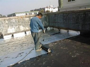 新天地专业防水
