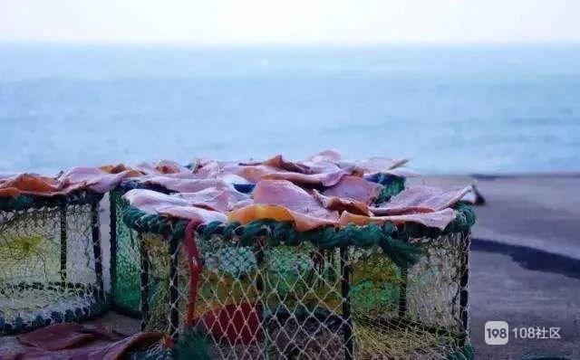 禁渔期未到  普陀1480名渔船老大提出提前休渔!