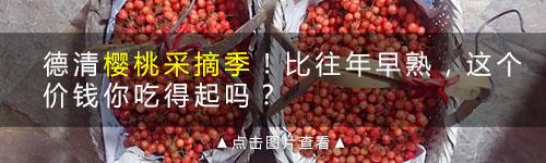 德清山里看到找到鲜艳红润的野莓,都说是蛇吃的?愣是分不清