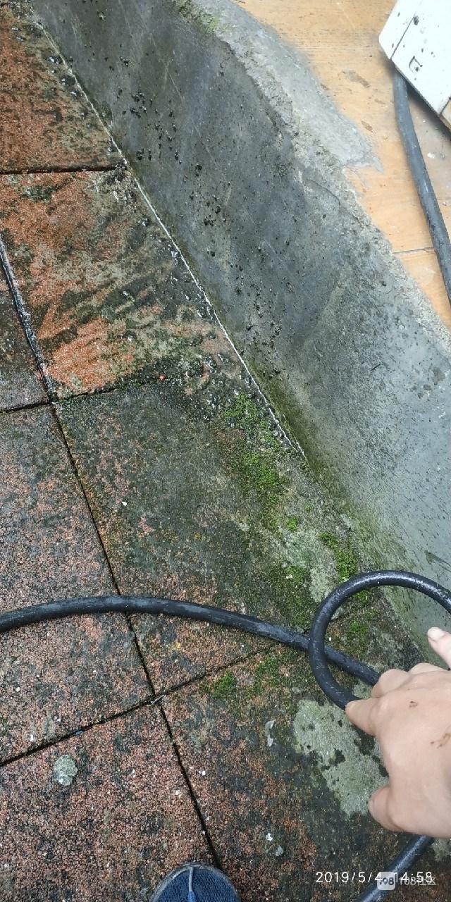 透水砖常年潮湿长满青苔,便民设施成隐患多亏有他出现