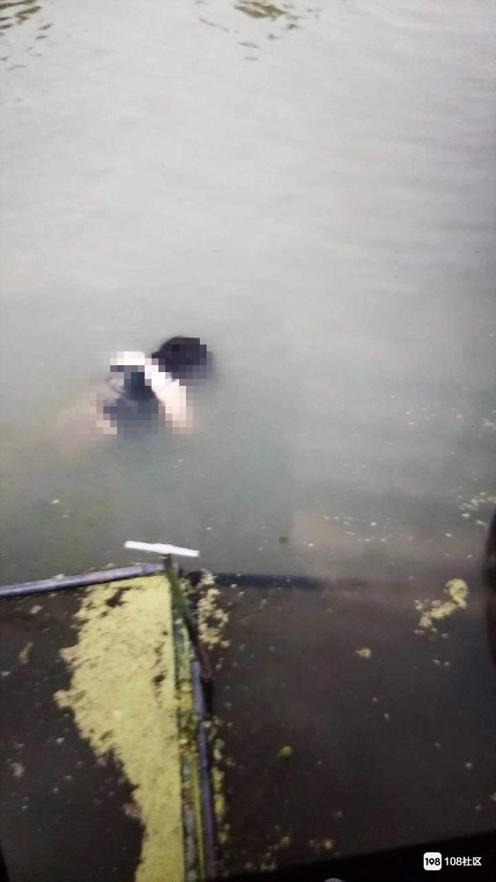 凌晨官桥一女子跳河续:遗体已打捞起,刚刚被拉走