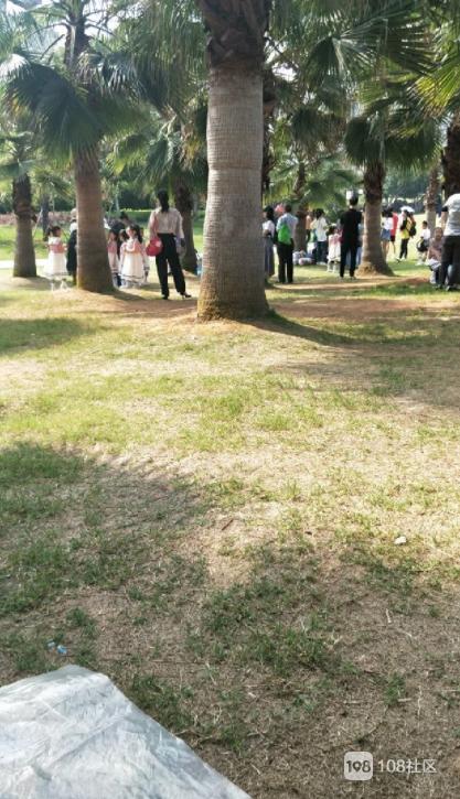 玉屏公园好热闹!今天不仅是母亲节,更是个特别日子
