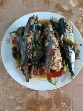 这鱼尝起来挺美味  但听说有毒不能多吃 求解答!